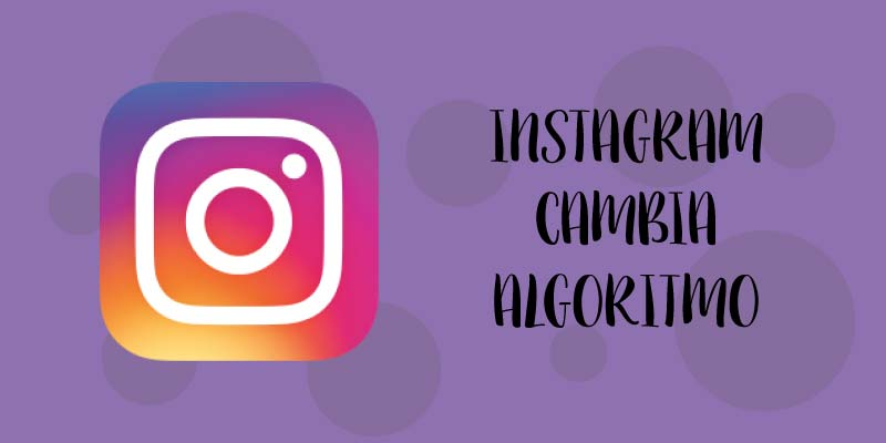 instagram cambia algoritmo